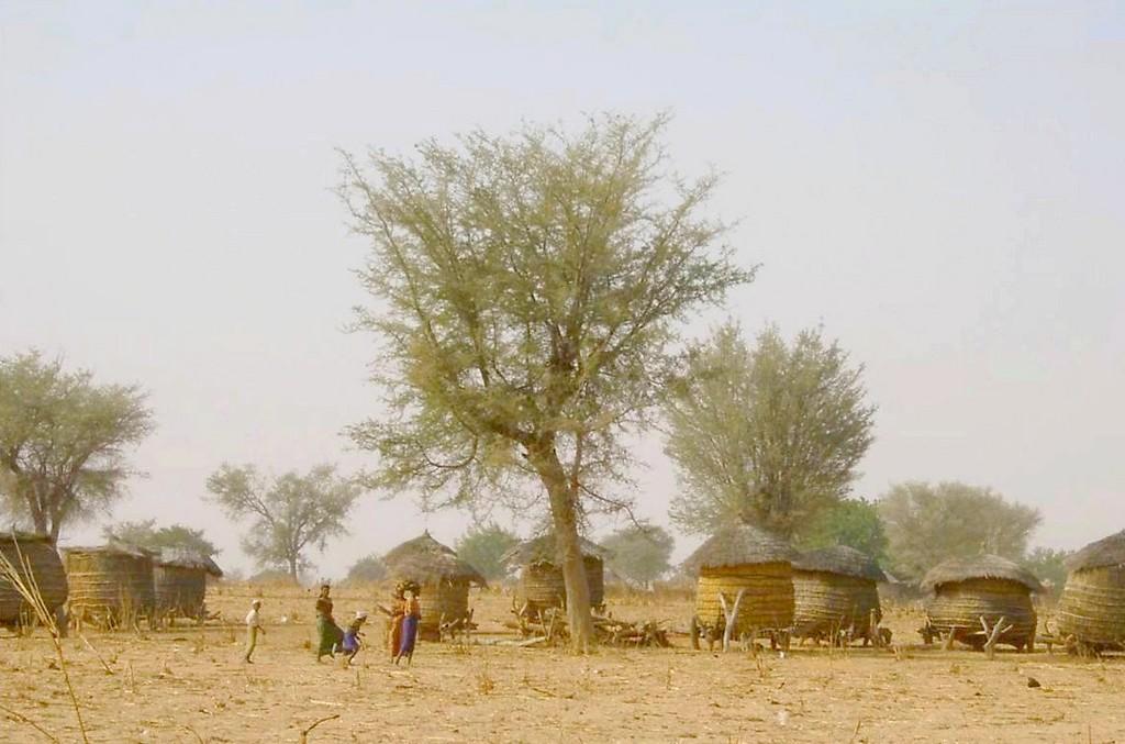 Greniers au village