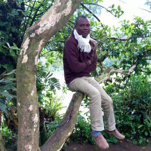denis sur un arbre perché